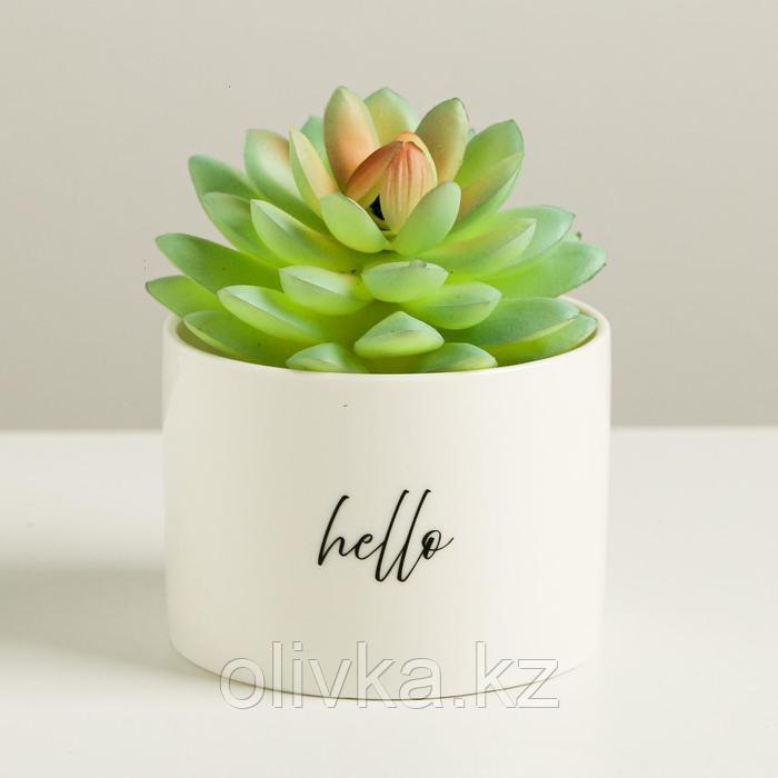Керамический белый горшок Hello, 8 х 5,5 см