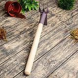 Мотыжка комбинированная, длина 38 см, деревянная ручка, фото 2