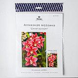 Алмазная мозаика «Дикая орхидея», 32 цвета, фото 3