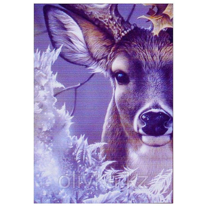 Алмазная мозаика «Первый мороз» 20 × 29 см, 23 цветов