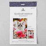 Алмазная мозаика «Очаровашка» 29,5×20,5 см, 25 цветов, фото 3