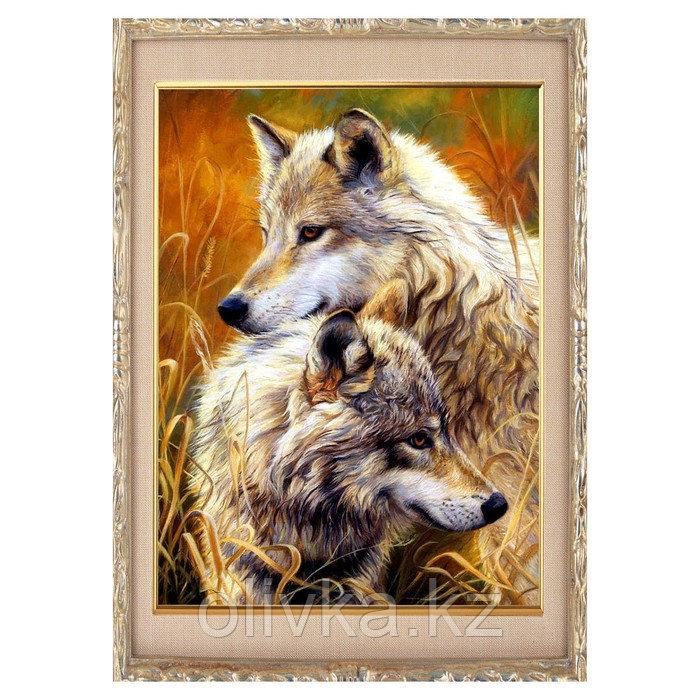 Алмазная мозаика «Волчья пара» 30 × 40, 40 цветов