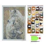 Алмазная мозаика «Волчья пара» 30 × 40, 40 цветов, фото 2