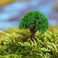 Миниатюра кукольная, набор 4 шт «Дерево» размер 1 шт: 2×2×3,5 см, цвет зелёный