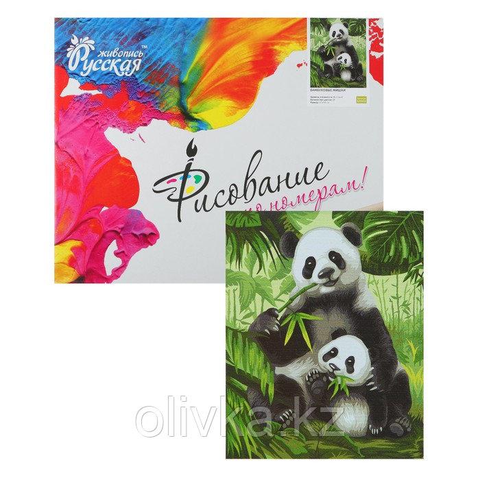 Картина по номерам «Бамбуковые мишки» 40 × 50 см