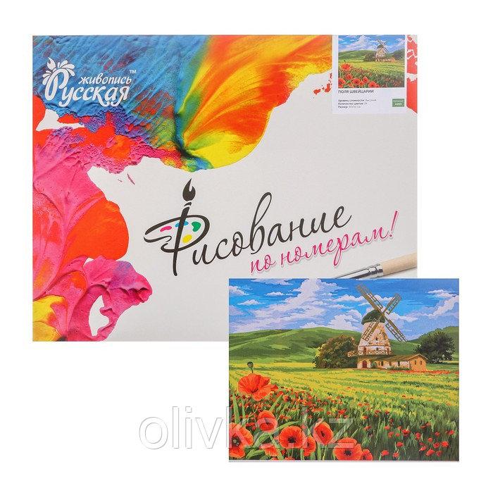 Картина по номерам «Поля Швейцарии» 40 × 50 см
