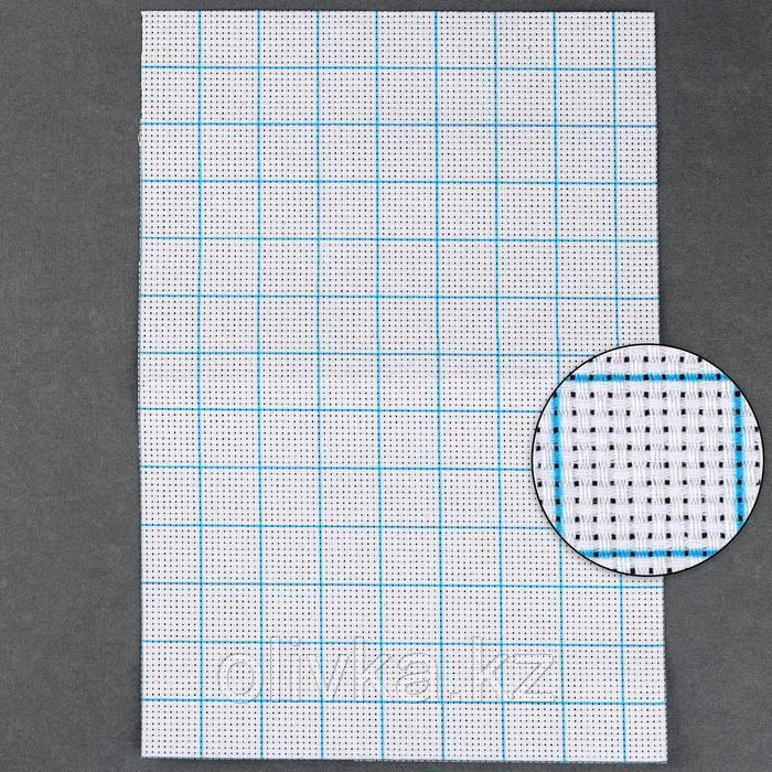Канва для вышивания, в клетку, №11, 30 × 20 см, цвет белый