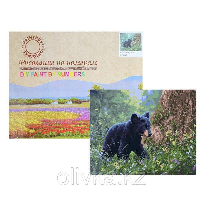 Картина по номерам «Лесной житель»
