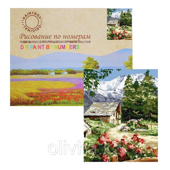 Картина по номерам «Деревушка в горах» 23 цвета