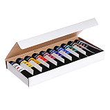 Набор художественных акриловых красок «Ладога», 10 цветов, 46 мл, в тубе, фото 3