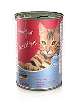 Влажный корм кошек Bewi-Cat Meatinis Salmon из океанической рыбы