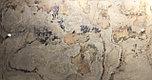 Каменный шпон Falling leaves 2800х1450мм гибкий камень, фото 4