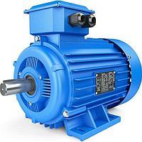 Электродвигатель А315S6У3 380/660В 110 кВт 1000 об/мин