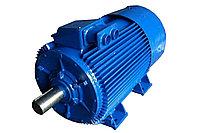 Электродвигатель М250S2У3 380/660В 110 кВт 2950 об/мин