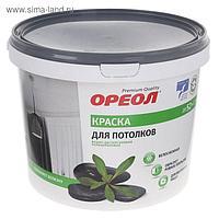 Краска водно-дисперсионная для потолка белая 3,0 кг