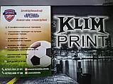 Дизайн Флаера,печать, фото 4