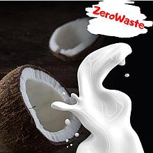 Сухое кокосовое молоко на развес