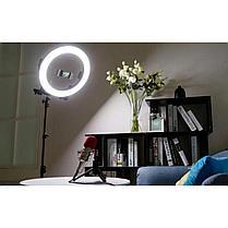 Кольцевая LED лампа /40 см /для съёмки с телефона модель  DEX M33 со стойкой в 190 см, фото 3