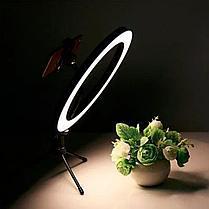 Кольцевая LED лампа /40 см /для съёмки с телефона модель  DEX M33, фото 3