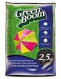 """Удобрение от пожелтения газона """"Робин Грин"""", 2.5 кг, фото 2"""