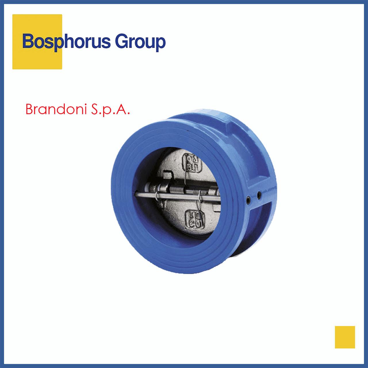 Клапан обратный двухстворчатый чугунный межфланцевый Ду 50 Ру 16 (Brandoni)