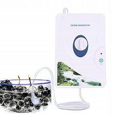 Озонатор воды и воздуха GL-3189 (600 мг/ч), фото 3