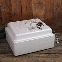 Инкубатор бытовой, на 63 яйца, автоматический переворот, цифровой термометр, 220 В/12 B