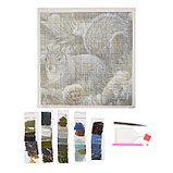 Алмазная мозаика «Белочка», 35 цветов, фото 2