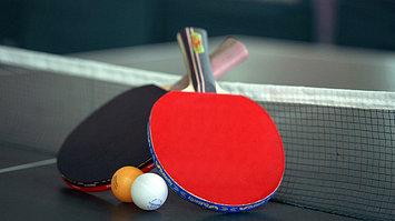 Настольный тенис (столы, рокетки, сетки, мячи)