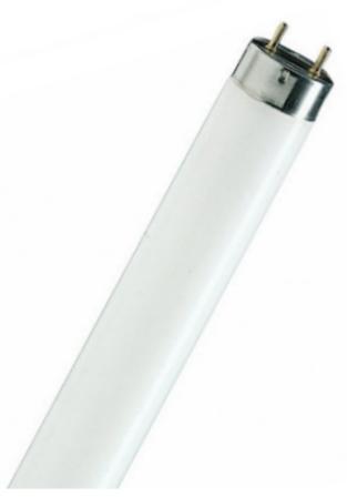 Лампа люмин. L8W/640 25*1 OSRAM
