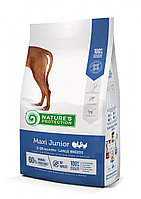 Сухой корм для щенков крупных пород Nature's Protection Maxi Junior Poultry с мясом птицы