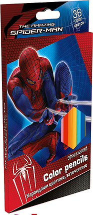 Карандаши, 36 цв. Spider-man, фото 2