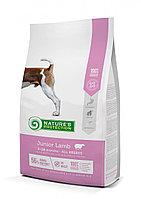 Сухой корм для щенков всех пород Nature's Protection Junior Lamb (ягненок)