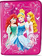Папка для труда. Princesses