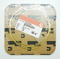 Прокладка регулировочная под гильзу (0,25 мм) Cummins QSL 3924445