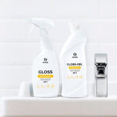 Чистящее средство для санузлов  Gloss-Gel Professional, фото 2