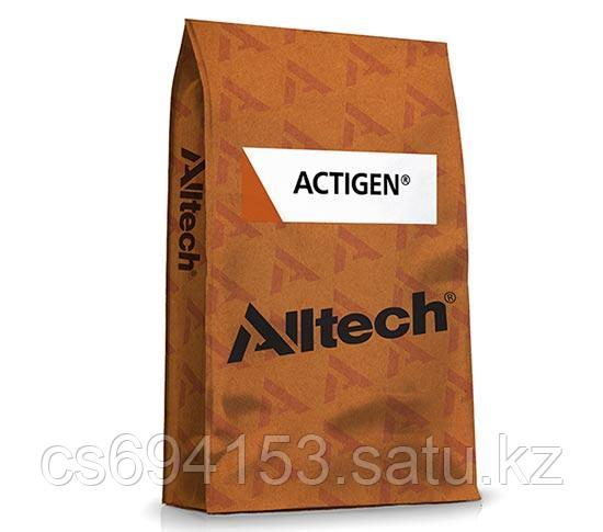 Актиген (Actigen): Кормовая добавка для повышения общей резистентности и увеличения продуктивности