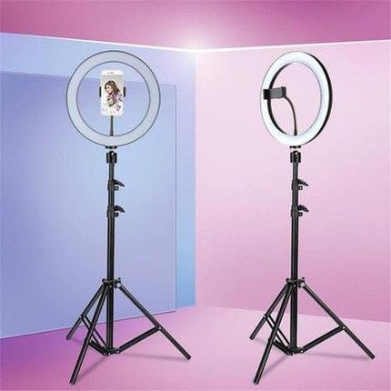 Кольцевая LED лампа /40 см /для съёмки с телефона модель  DEX M33 со стойкой в 190 см, фото 2