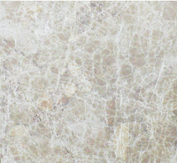 Мрамор JS 028 (305х305)