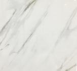 Плитка из керамогранита  YQ_819 (800*800)
