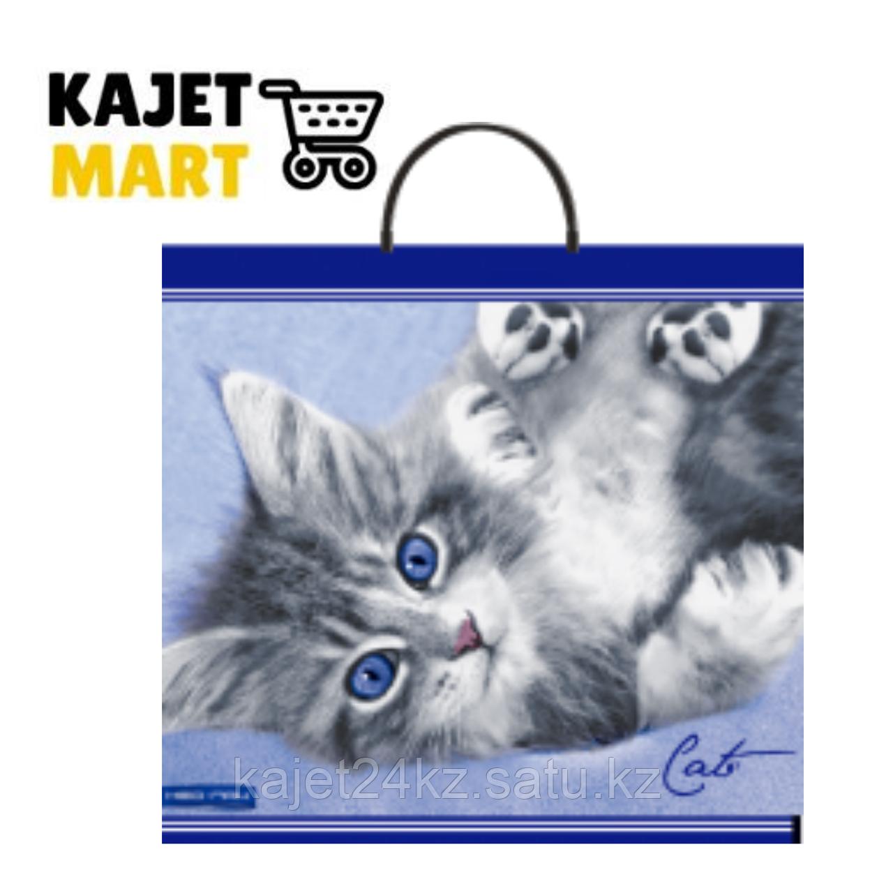Пакет Пластиковая Ручка, 37х35/90 мкм. Кот