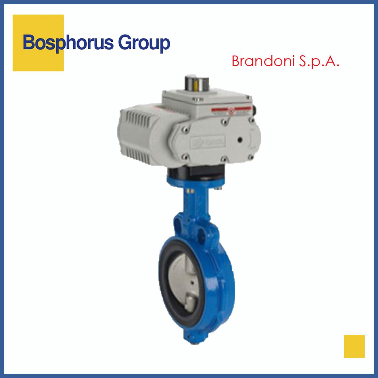 Затвор дисковый межфланцевый с эл/приводом, Ду150 Ру16 Brandoni (вода, +120)