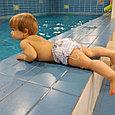 Памперсы многоразовые для бассейна  с высокой талией голубые мишки, фото 2