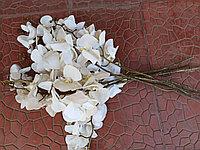 """Цветы искусственные """"Орхидеи"""" (Силикон), Б/У"""