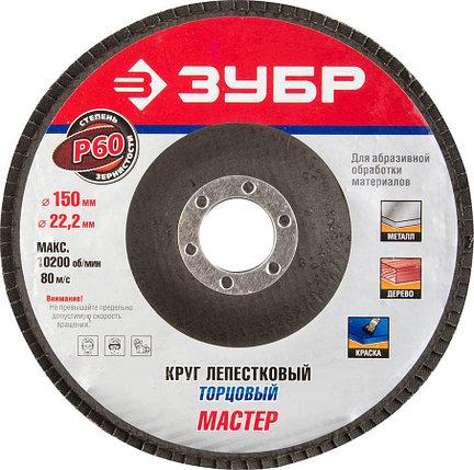 Круг шлифовальный лепестковый ЗУБР электрокорунд нормальный, P60, 150х22.2 мм (36592-150-60), фото 2