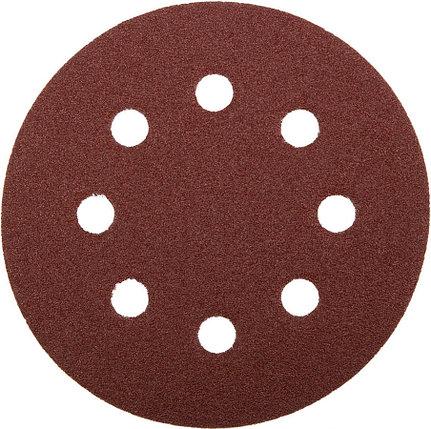 Круг шлифовальный ЗУБР 8 отв., Р60, 125 мм, 5 шт.,  абразивная бумага на велкро основе, серия (35562-125-060), фото 2