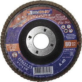 Круг лепестковый торцевой абразивный для шлифования ЛУГА 115 х 22.23 мм,P40 для УШМ (3656-115-40)