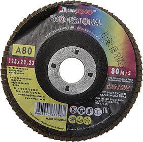 Круг лепестковый торцевой абразивный для шлифования ЛУГА 125 х 22.23 мм,P80 для УШМ (3656-125-80)