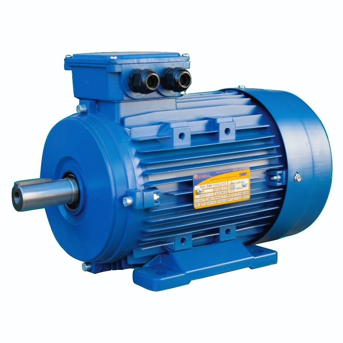 Электродвигатель 5АИ 100 S4 3кВт, 1500 об/мин