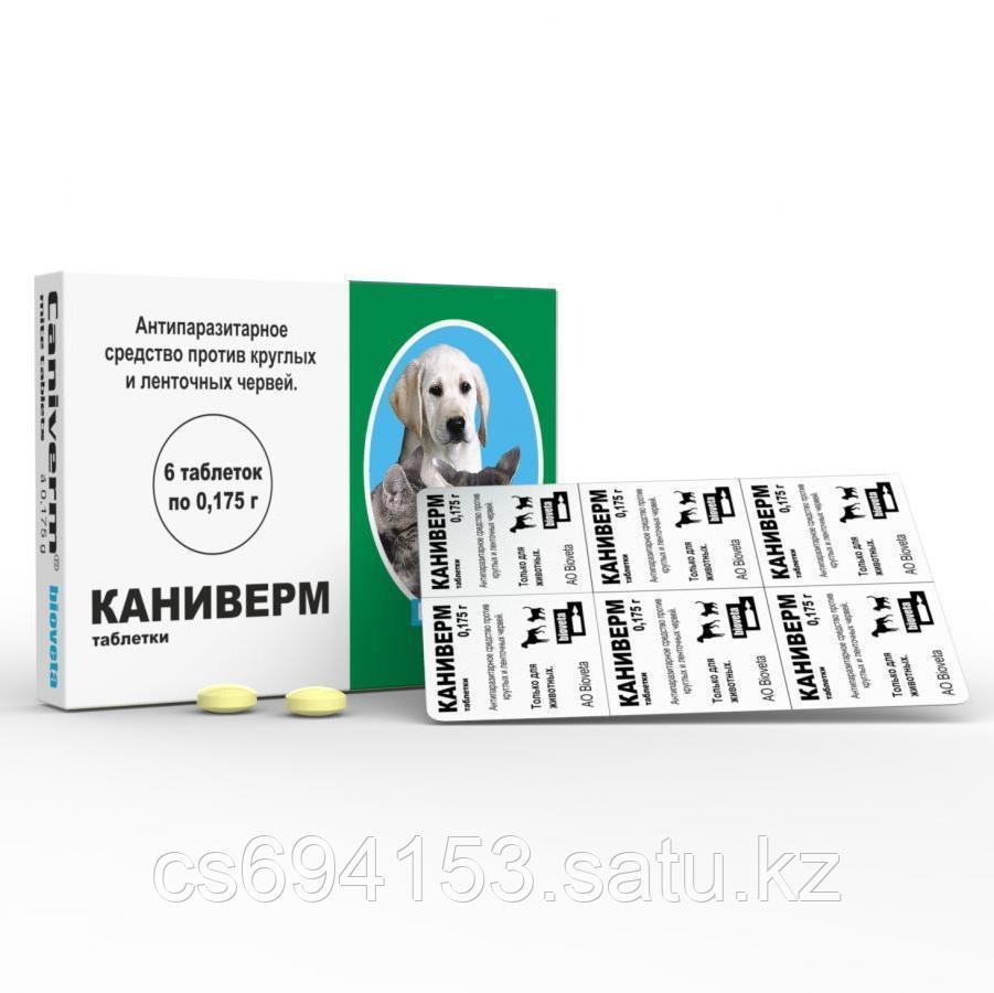 Каниверм, таблетки: Противопаразитарный препарат от круглых червей и ленточных червей